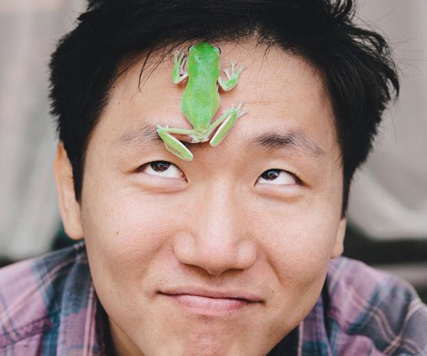 hiro-murai-frog
